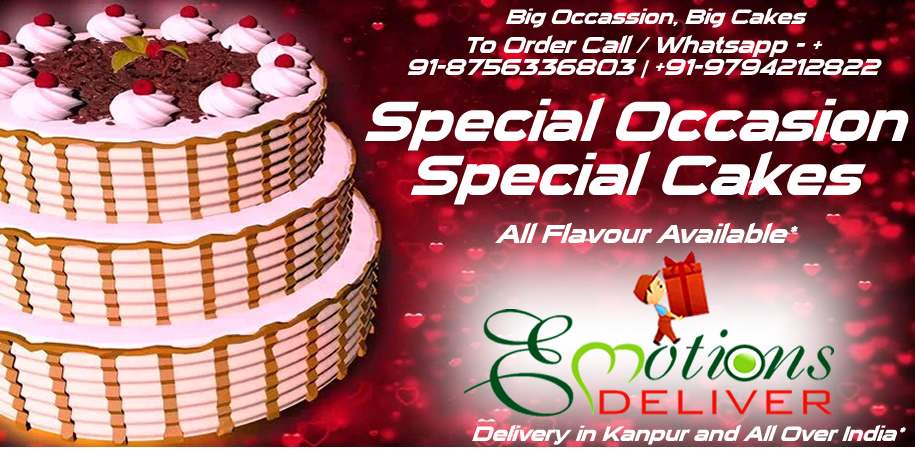 Big Occasion Big Cakes - Special Occasion Special Cakes- Delivery in Kanpur and All Over India